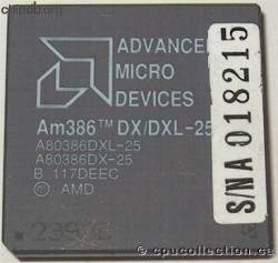 AMD A80386DX/DXL-25 rev B white print